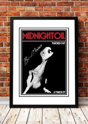 Midnight Oil 'Bird Noises' In Store Poster 1980