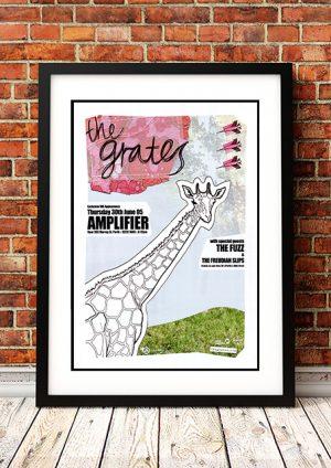 Grates / The Fuzz / The Freudian Slips 'Amplifier' – Perth Australia 2005