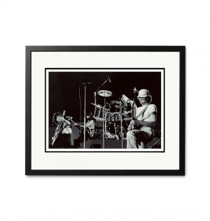 Daddy Cool / Ross Hannaford – 'Rare Limited Edition Fine Art Print'