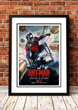 Ant Man – 2015