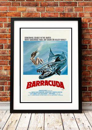 Barracuda – 1978