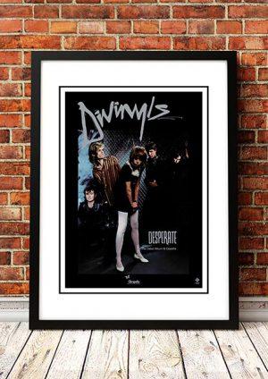 Divinyls 'Desperate' In Store Poster 1983