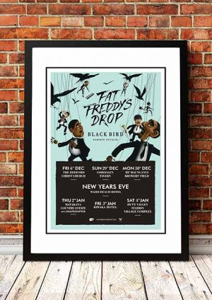 Fat Freddy's Drop 'Blackbird Summer Detour' New Zealand 2013